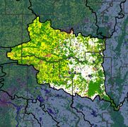Watershed Land Use Map - Lower White-Bayou Des Arc