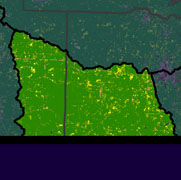 Watershed Land Use Map - Bayou D'Arbonne